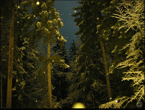 bajando de la montaña nos sorprendió una tormenta de nieve y nosotros sin cadenas